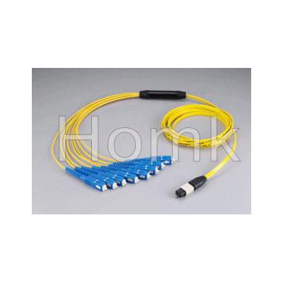 Patch cord(SC MPO)